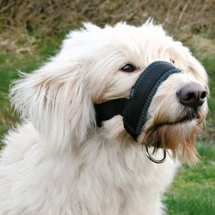 TRIXIE Fabric muzzle black 18-30 cm, L size