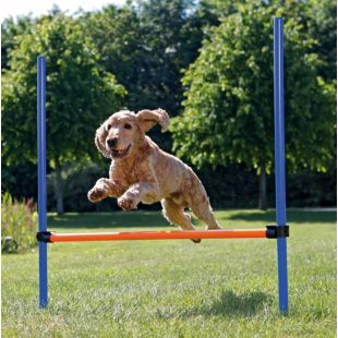 TRIXIE Toy for dogs blue / orange, 123x115 cm