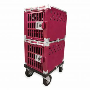 HYDROGROOM 100 Crate, double cage for animals Rasberry Sparkle