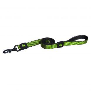 DOCO Martini nylon leash green M size