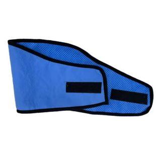 JOYEN Collar-vest for pets cooling, size L, blue